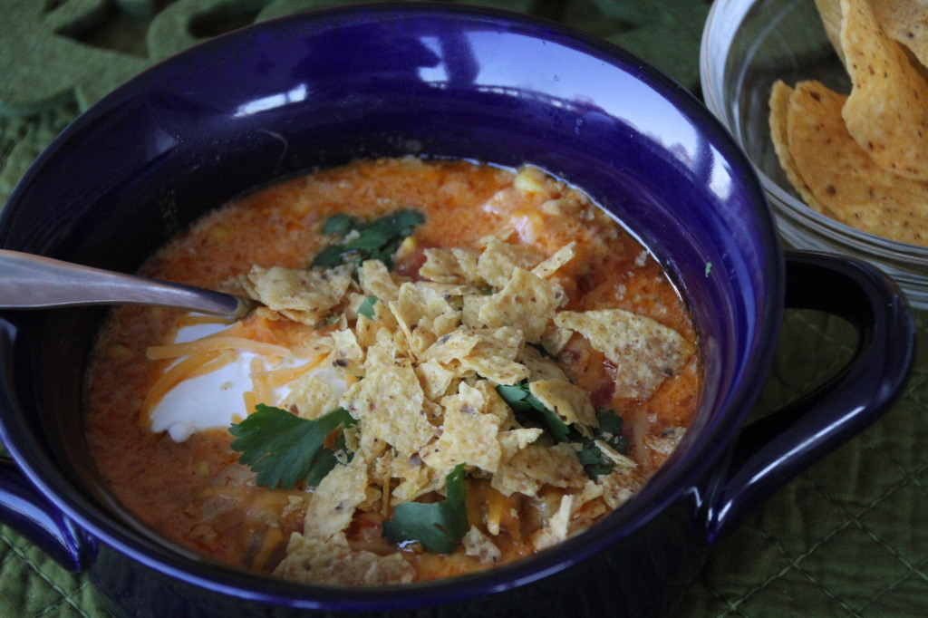 cheesy southwestern chicken soup