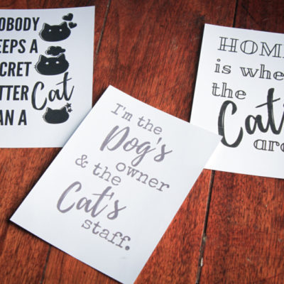 Free Cat Printables & Tips For Caring For Multiple Cats #Unsmellable #FreshStepFebreze