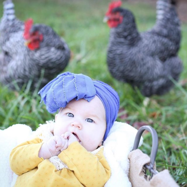 She was being photobombed by the chickens